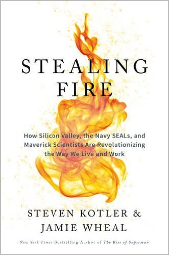 Stealing Fire cover